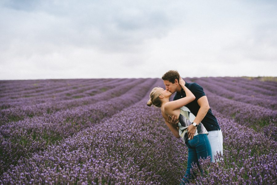 Hitchin Wedding Photographer, Hitchin Lavender Fields, Wedding Photographer St Albans, Engagement Photographer Stamford