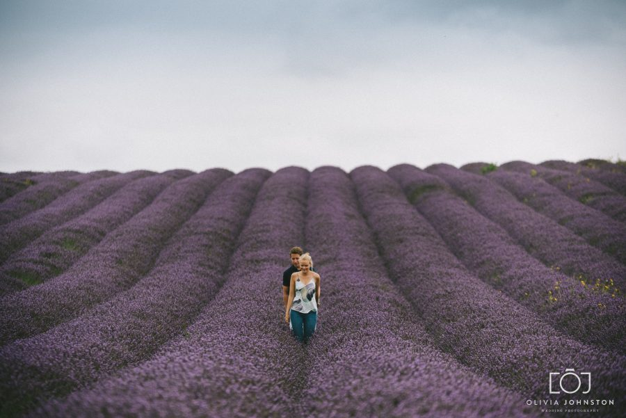 Hitchin Lavender Farm, Hitchin Wedding Photographer, Engagement Shoot, Natural Wedding Photography